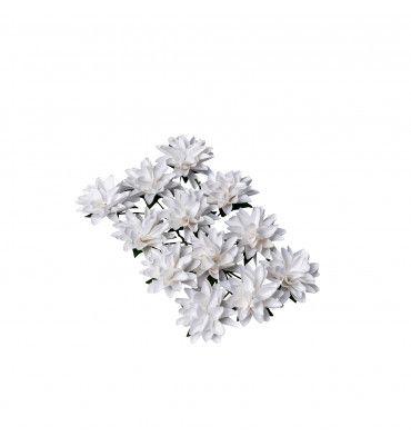 Kit de 12 fleurs Dalhia sur...